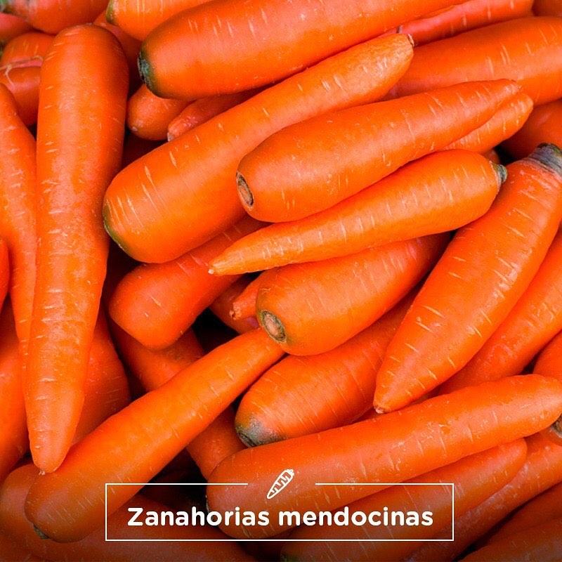 MENDOZA, PRINCIPAL PRODUCTORA DE ZANAHORIA