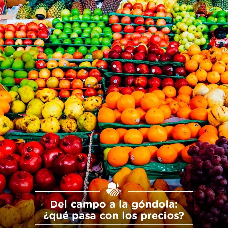 POR LA PERA Y LA NARANJA, LOS CONSUMIDORES PAGARON MÁS DE 11 VECES DEL VALOR DEL PRODUCTO EN EL CAMPO