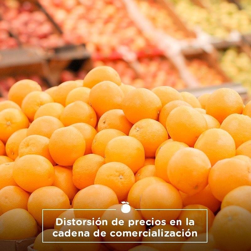 BRECHA ENTRE EL CAMPO Y LA GÓNDOLA