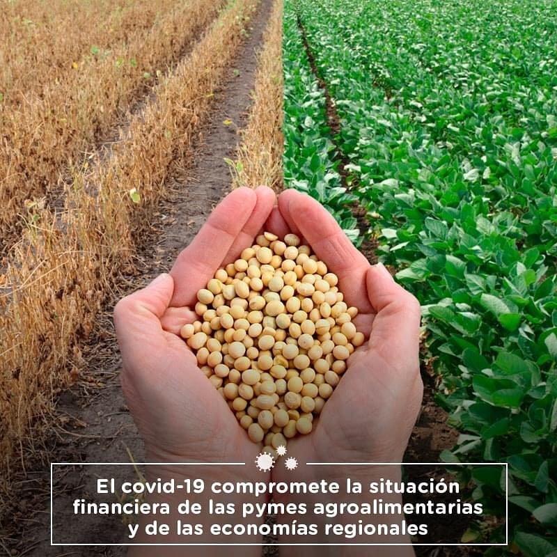 EL COVID-19 COMPROMETE LA SITUACIÓN FINANCIERA DE LAS PYMES AGROALIMENTARIAS Y DE LAS ECONOMÍAS REGIONALES