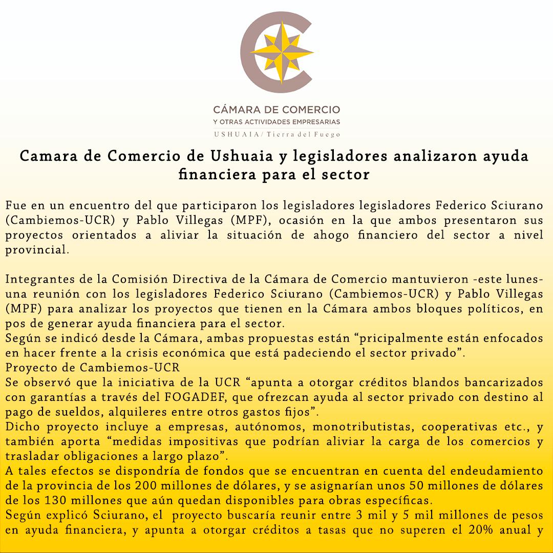 Cámara de Comercio de Ushuaia y legisladores analizaron ayuda financiera para el sector